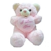 24 pink teddy w/pilow